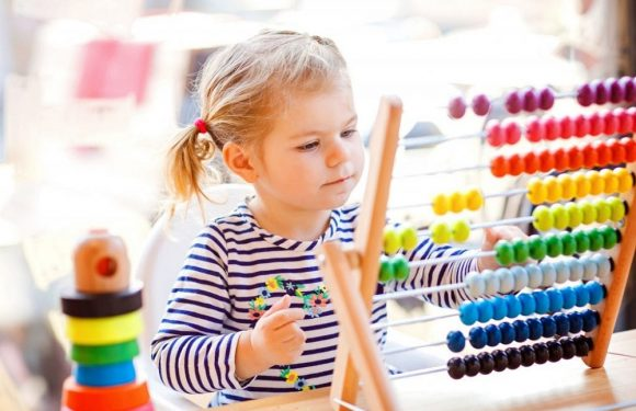 A Brief Guide To Choose The Right Toys For Toddlers