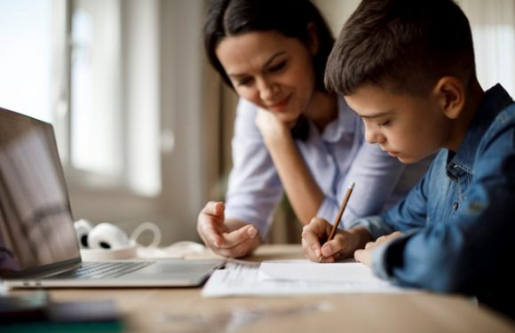 Reliable Tutors For Primary and Secondary School Students